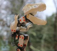 poppy robot
