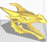 skyrim dragon skull