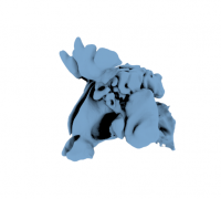 "sphenoid bone"" 3d models to print - yeggi, Human Body"